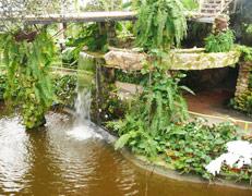 Музыкальными водяными фонтанами