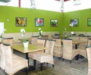 Cafe' Utopia